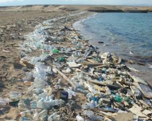 Plastikmüll am Strand.