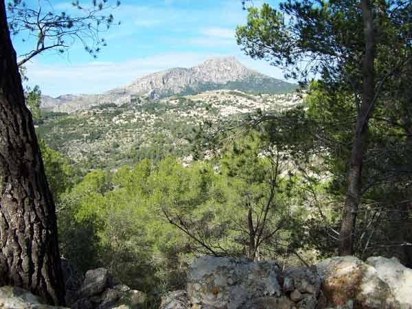 Wandern in der Bergregion Mallorcas
